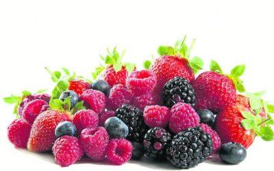 Las ventas de frutos rojos de Huelva a Europa suben un 11%